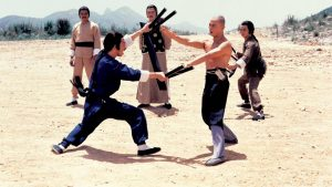 kungfu attack from Return to the 36th Chamber